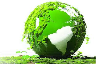 安全环保 绿色装饰